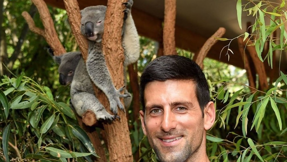 Novak Djokovic Concerned About Air Quality in Melbourne Amid Fires -- Should Australian Open Be Postponed?